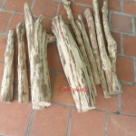 lõi gỗ sưa non giá rẻ, gỗ huỳnh đàn, gỗ huê
