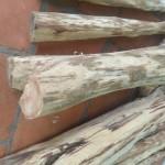 bán sập gỗ sưa