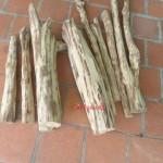 mua gỗ sưa 10 năm tuổi, bán gỗ sưa to